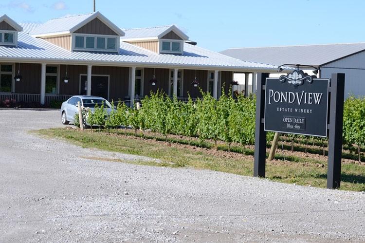 pondview-estate-winery-niagara