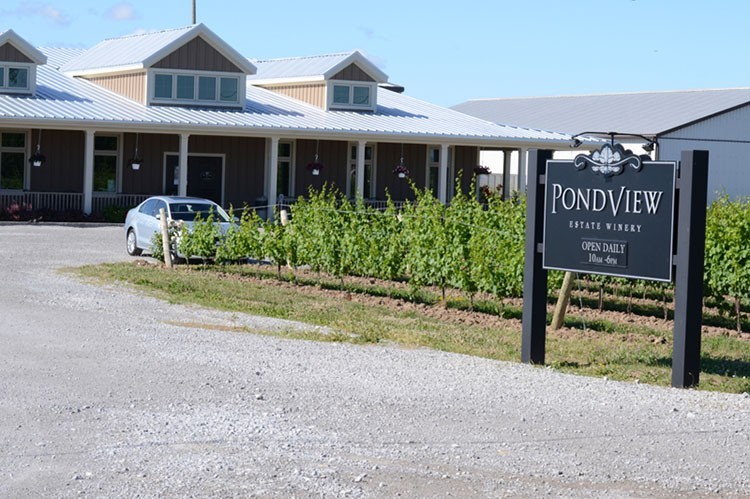 pondview-estate-winery-niagara
